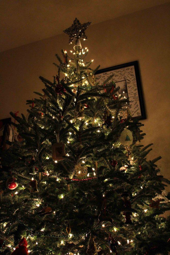 My Christmas tree!