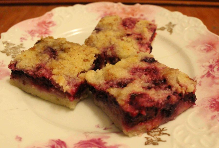 Instant summertime: blackberry pie bars!