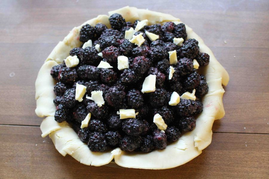 Blackberry pie 06