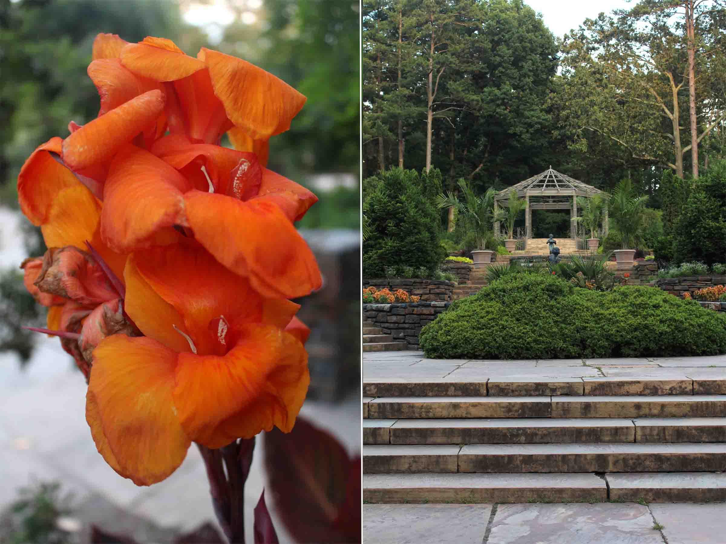 Duke Gardens02