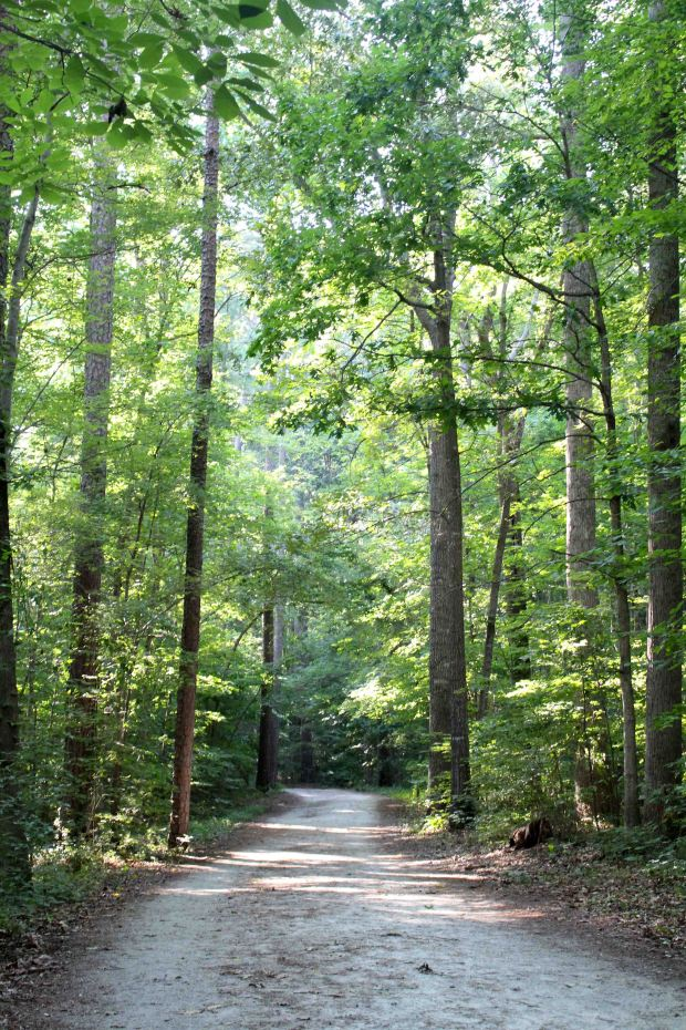 The Al Buehler Trail on Duke's campus is