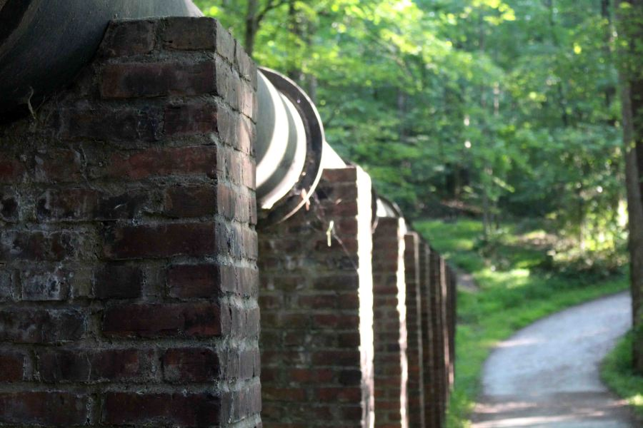 The Al Buehler Trail on Duke's campus is the perfect running trail or a calming walk with a friend.