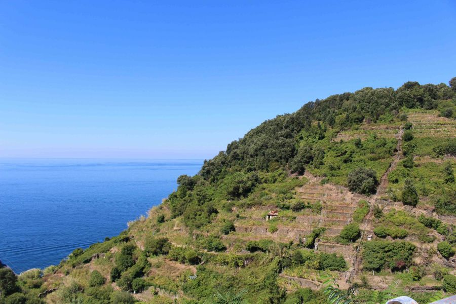 Where the mountains meet the ocean: a guide to Cinque Terre!