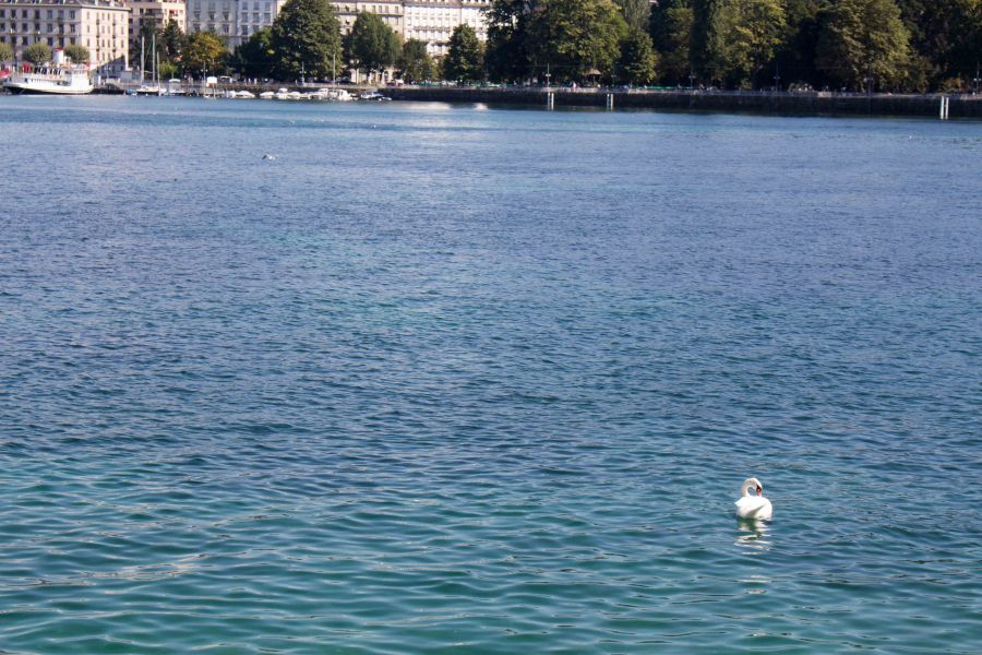 Geneva is a fantastic city. Here's a few things you can't miss in Switzerland!