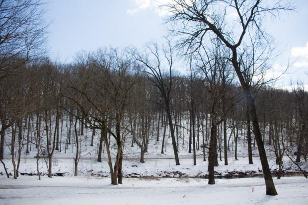 SnowDC-11